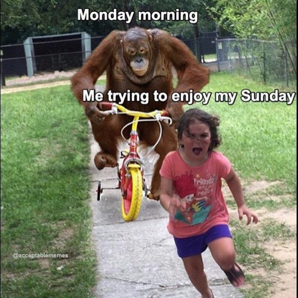 monday trying to run down sunday