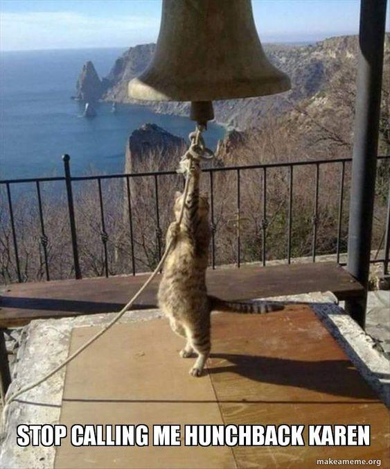 Karen Cat Meme