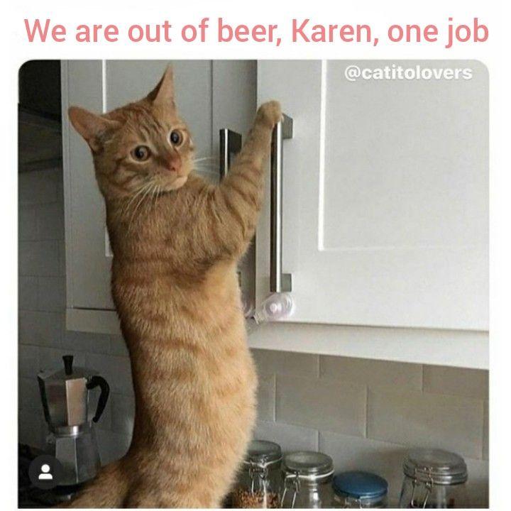 funny karen cat memes