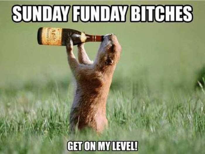 Sunday Funday drink and laugh at this memes