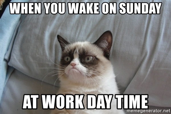 angry cat sunday work memes