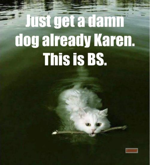 karen cat jokes