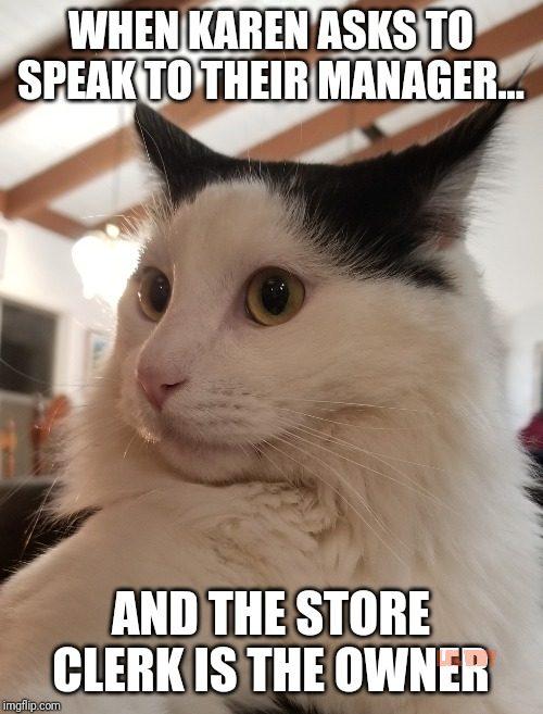 why karen in cat memes