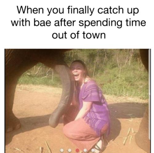 dirty memes reddit
